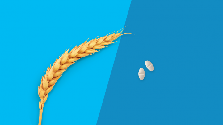 A piece of wheat and medications symbolize gluten-free drugs