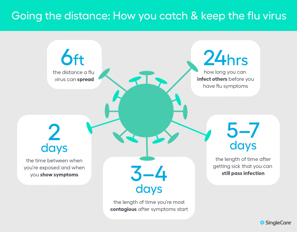 Going the distance; flu infographic