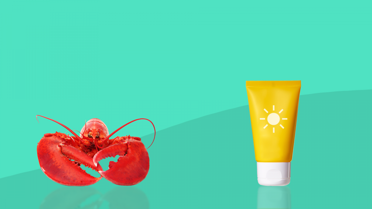 sunburn relief - a lobster and sunscreen bottle