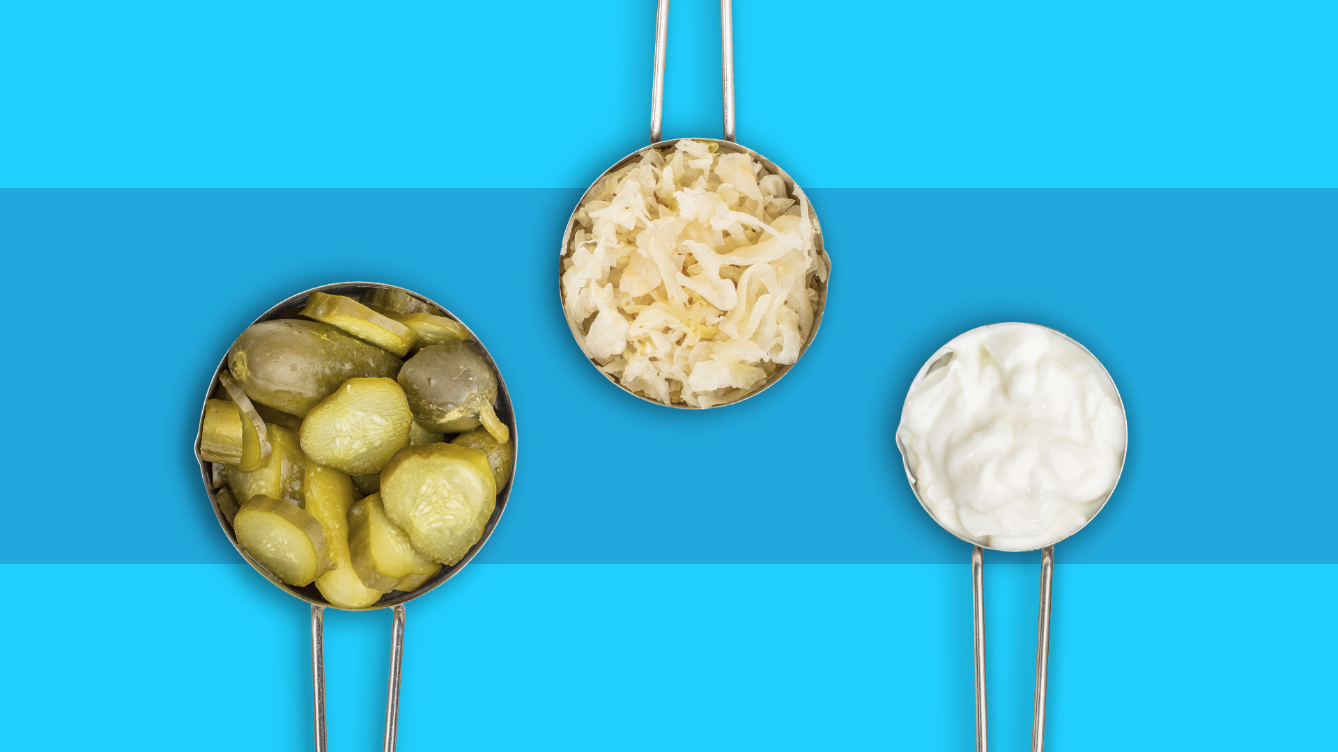 Probiotics 101: What are they? And which are the best?